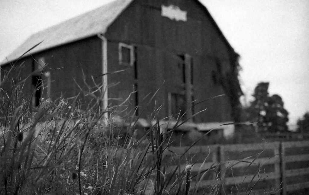 400TX:365 - Week 36 - No Theme