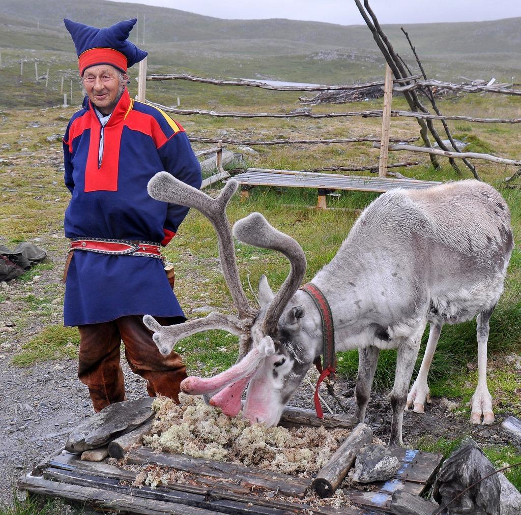19. Lapón noruego y reno. Autor, Scott1723