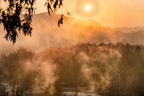 sun fog sunrise landscape dawn foggymorning murrumbidgeeriver