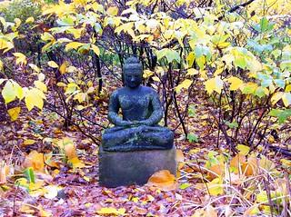 Autumn Buddha