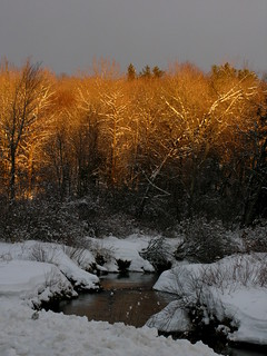 Lit Winter River