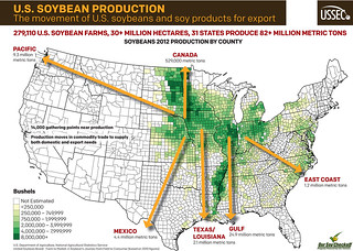 Movement of US Soybeans Infographic