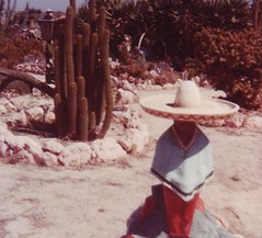 A sombrero in the cactus garden