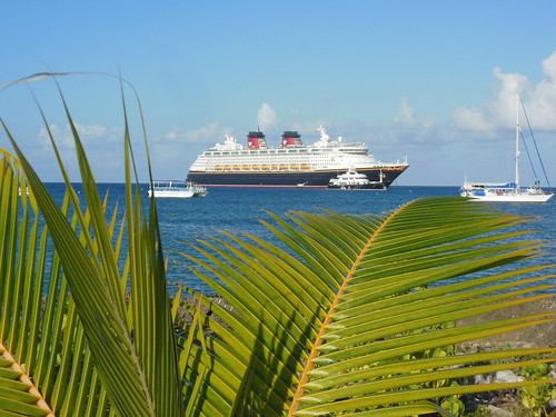 Disney Cruise Line Without Kids! My Review. (seen here Disney Wonder Anchored at Grand Cayman)