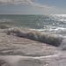 vacation-florida-boat-rentals-englewood-florida-14