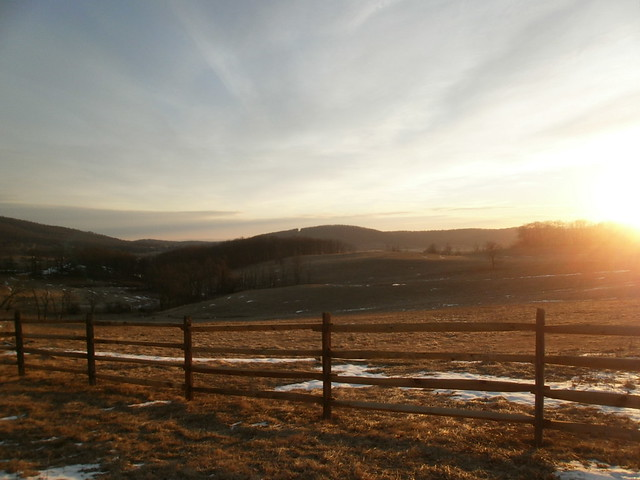 Early morning at Sky Meadows State Park on January 8.