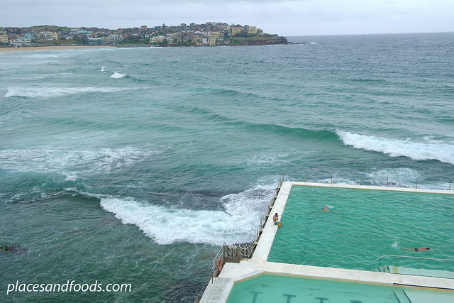 iceberg pool view bondi