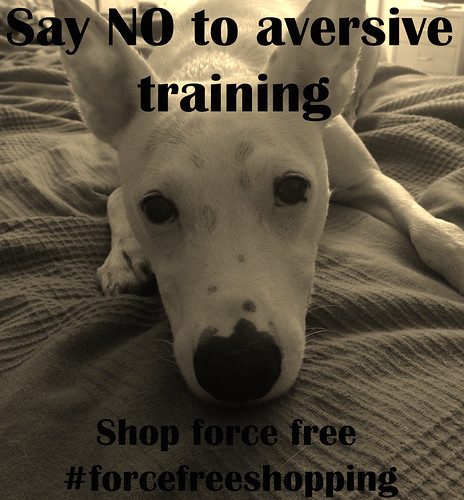 Say NO to shock, prong, and pinch collars and the businesses who sell them. #forcefreeshopping