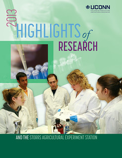 highlightsOFresearch2013-1