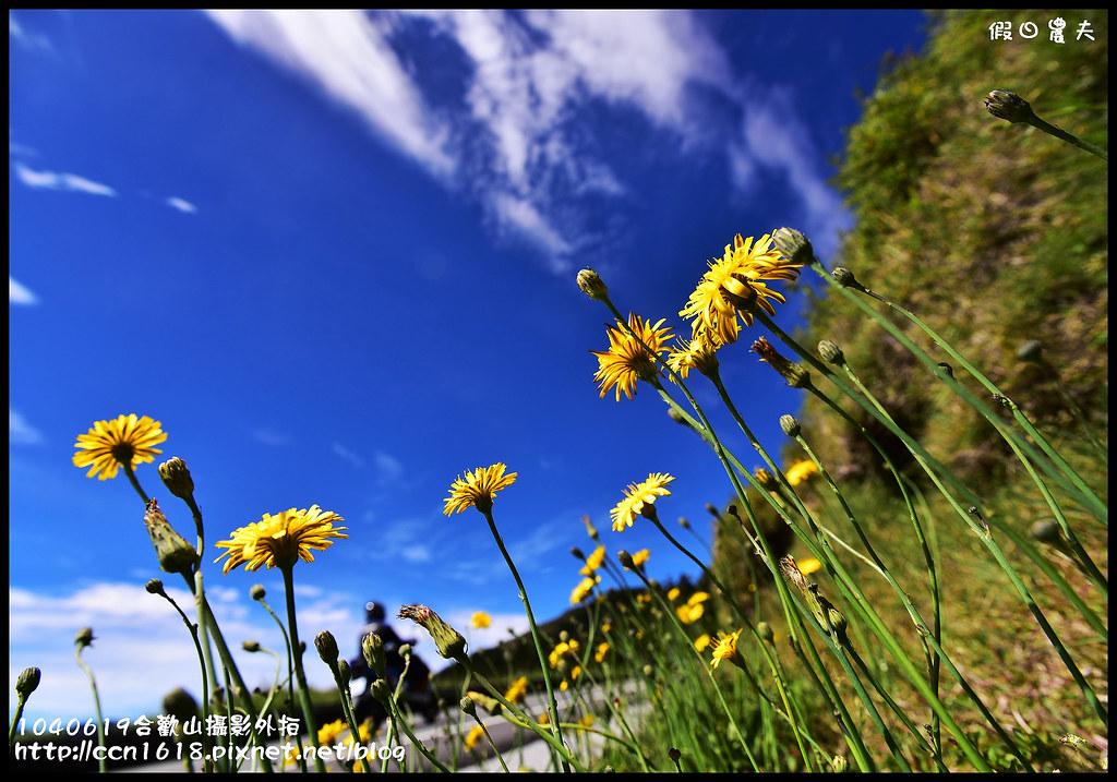 1040619合歡山攝影外拍DSC_1521