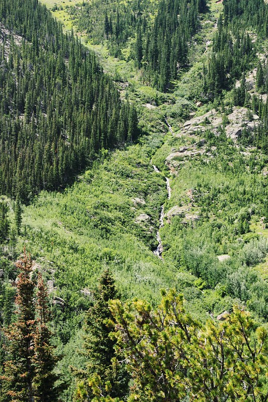 Mountain Creek in Rocky Mountain National Park