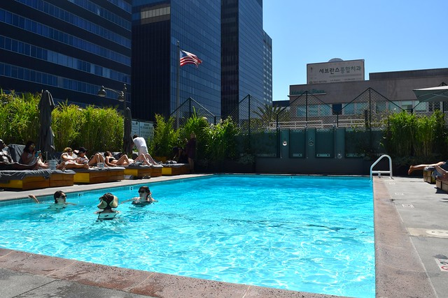 Terrace Pool at The Line Hotel, Los Angeles