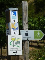 Hiwweltour und Siefersheimer Bänkelches-Route