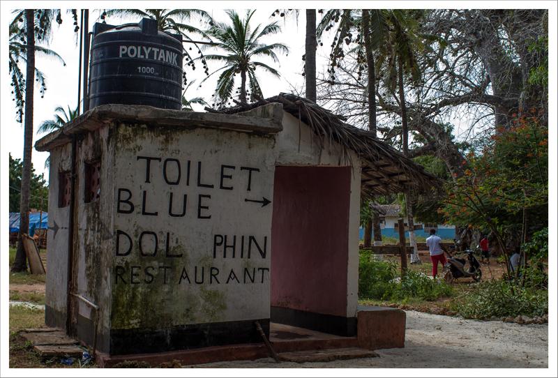 Toilet blue