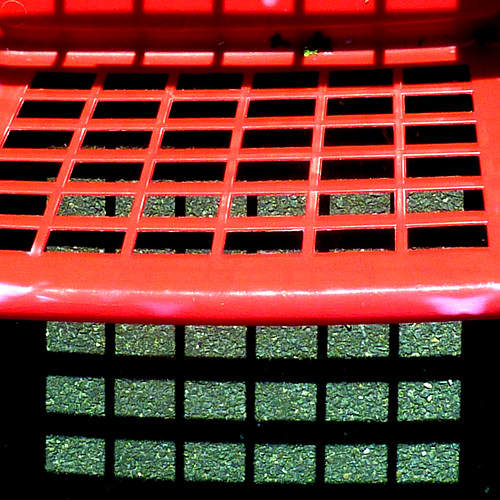 red grid by pho-Tony