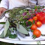 Herbs from the Garden - Hans Herzog, New Zealand