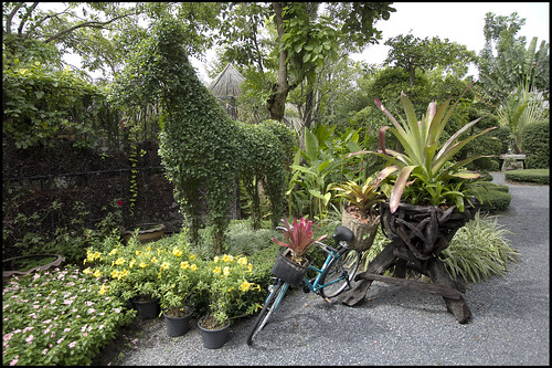 Phuket Botanic Garden is well looked after