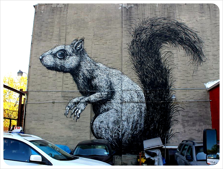 Squirrel Roa Williamsburg Brooklyn