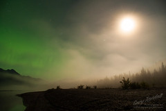 Auroral Moonglow