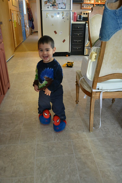 Munchkin in Spiderman Slippers