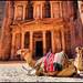Petra ! by Bashar Shglila