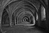 The Cellarium at Fountains Abbey in Mono