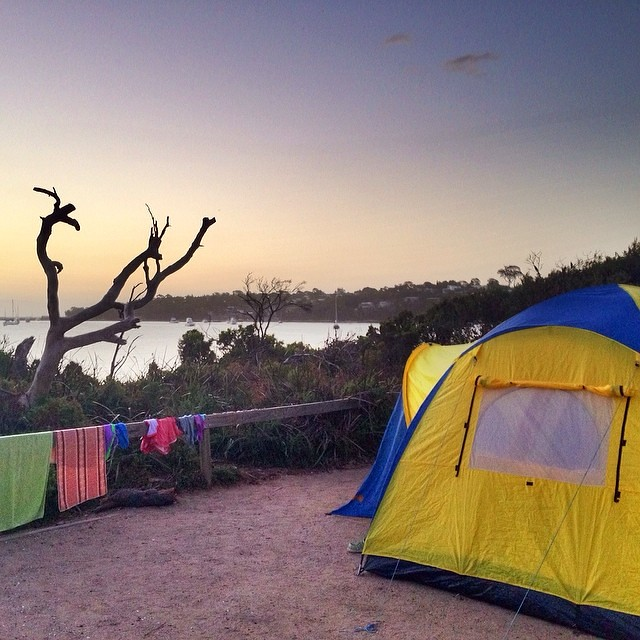 Wish I could have taken the week off work. || #campsite #freycinet #sunset