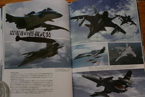 Ace Combat Master File - ASF-X SHINDEN II - 11
