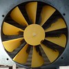 ten blade yellow fan by Andy M Johnson