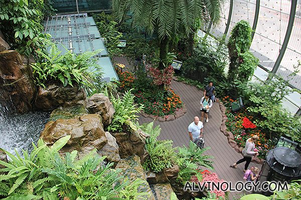 Aerial view of the Butterfly Garden at T3