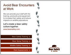 Bear Safety postcard back