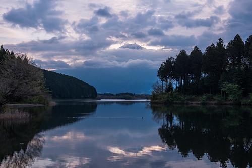 morning mountain lake reflection japan sunrise duck fuji cloudy diamond tanuki fujinomiya tanukiko shizuokaprefecture 2013 arcreyes