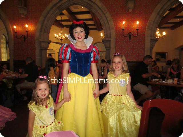 My Fancy Princess Belle Dress
