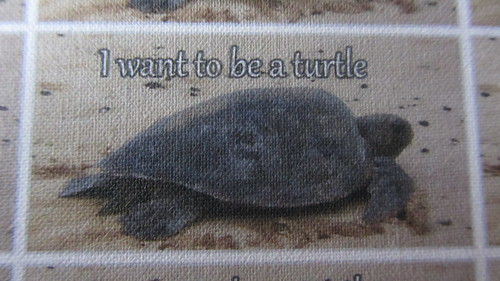 I want to be a turtle clothing label
