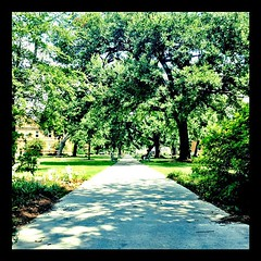 the calm before the storm- NOLA Experience moving in today and Move In Day this Saturday! #tulane