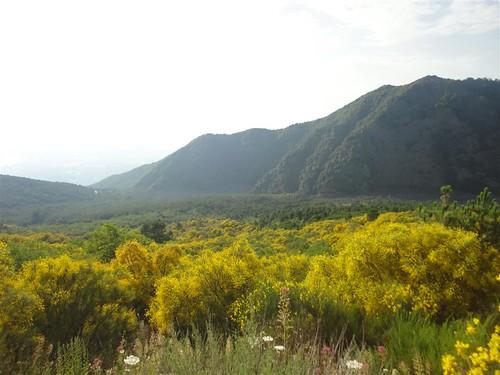 Vesuvio - Monte Somma