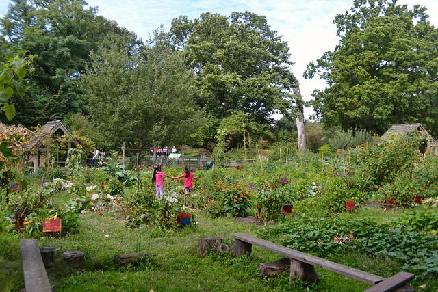 Participants relax in the Children's Garden. Photo by Blanca Begert.