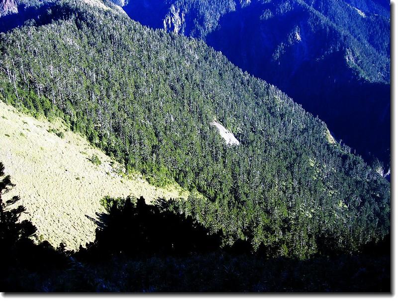 玉山西峰俯瞰大峭壁