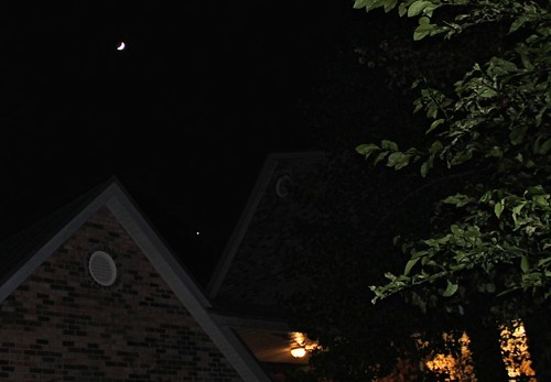 CrabAppleLane, Crescent Moon, and Venus - Thursday, November 7, 2013