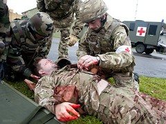 RAF and French Air Force Medics Working Together During an Exercise
