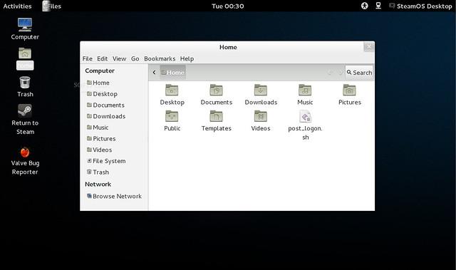 Файловая система SteamOS
