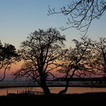 Sunset in Long Island