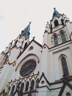 cathedral of st john in savannah