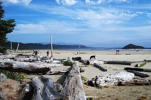 Beach at Incinerator Rock, Tofino, Vancouver Island, British Columbia