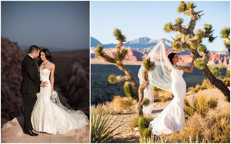 Senada + Agron, statement bridal necklace and hair comb: Bridal Styles Boutique, photography: AlbaPro