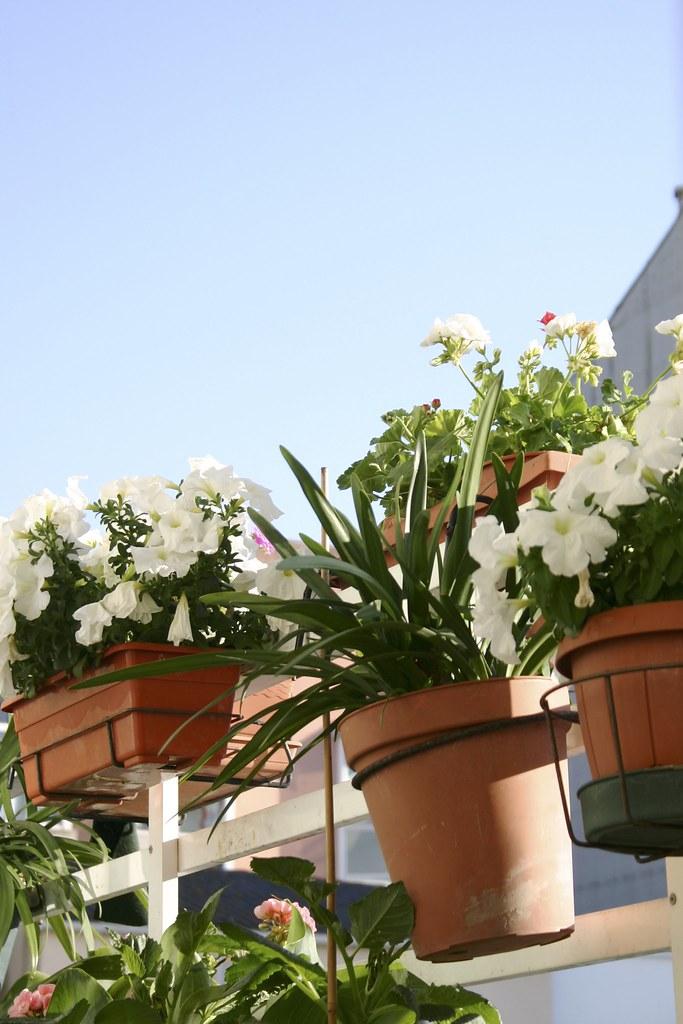 plantas_9_20130708 - Version 2