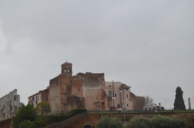 Roma 1 febbraio 2014 010
