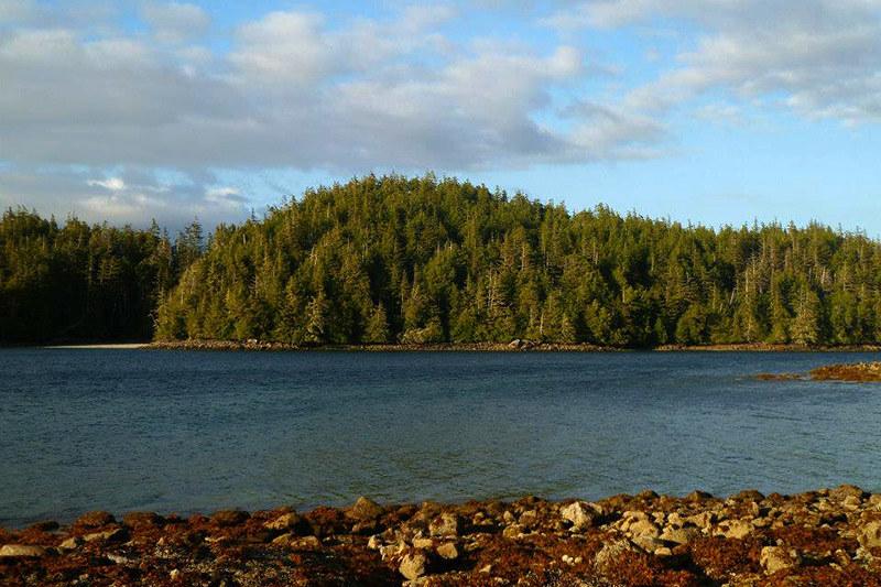 Dodd Island, Broken Group Islands, Barkley Sound, Pacific Rim, Vancouver Island, British Columbia, Canada