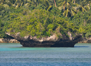 Tonga Offshore-25