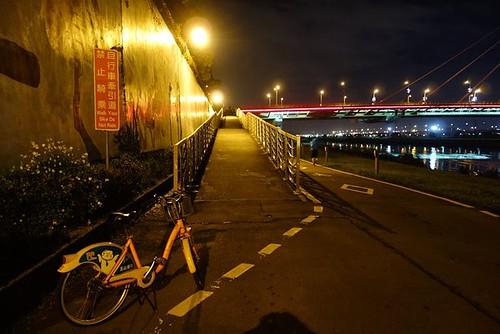 由河濱公園內連結大直橋的單車引道。